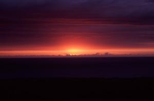 1116 Sunset