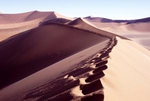 0922 Dune 45 (2)